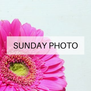 sunday-photo-161002-featured