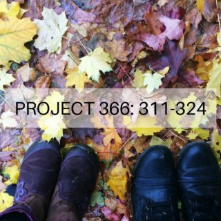 project-366_-311-324