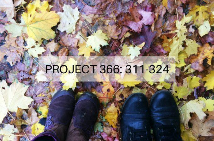 Project 366: Week 45-46: 311-324