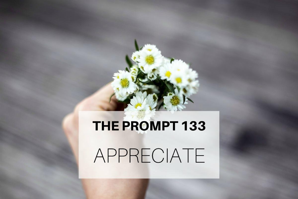 The Prompt 133: Appreciate