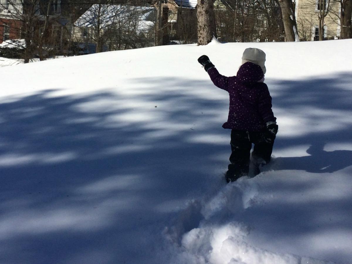 Snow Storm 8