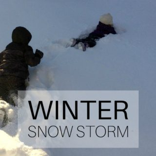 Winter: Snow Storm
