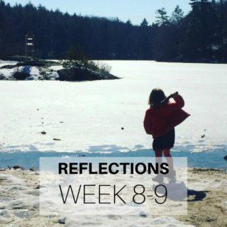 Reflections Week 8-9