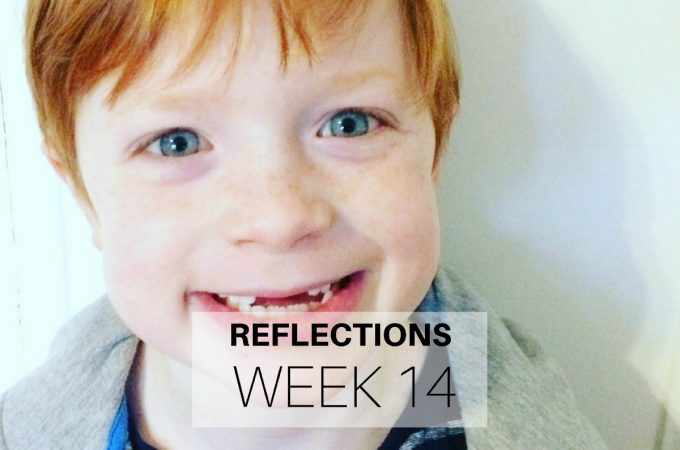 Reflections: Week 14