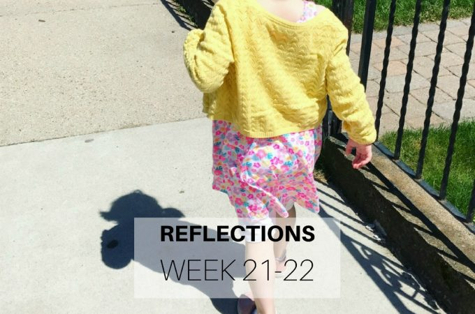 Reflections: Week 21-22