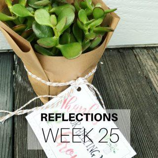 Reflections Week 25