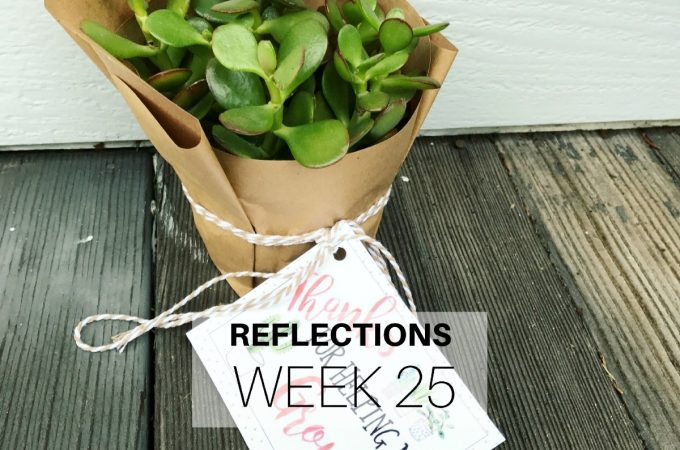 Reflections: Week 25