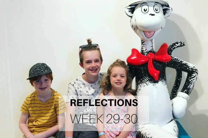 Reflections: Week 29-30