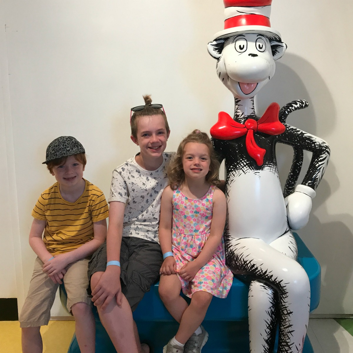 Snapshots from the Springfield Museums 8