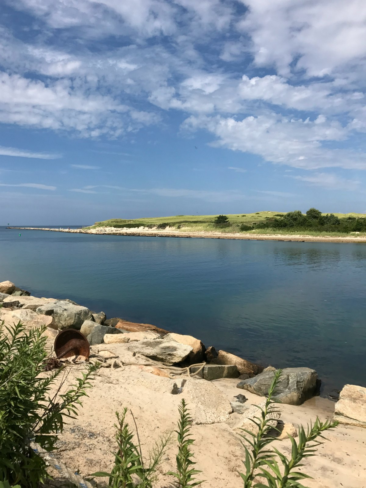 Snapshots from Cape Cod 8