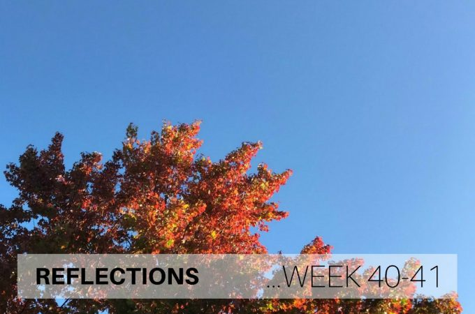 Reflections: Week 40-41
