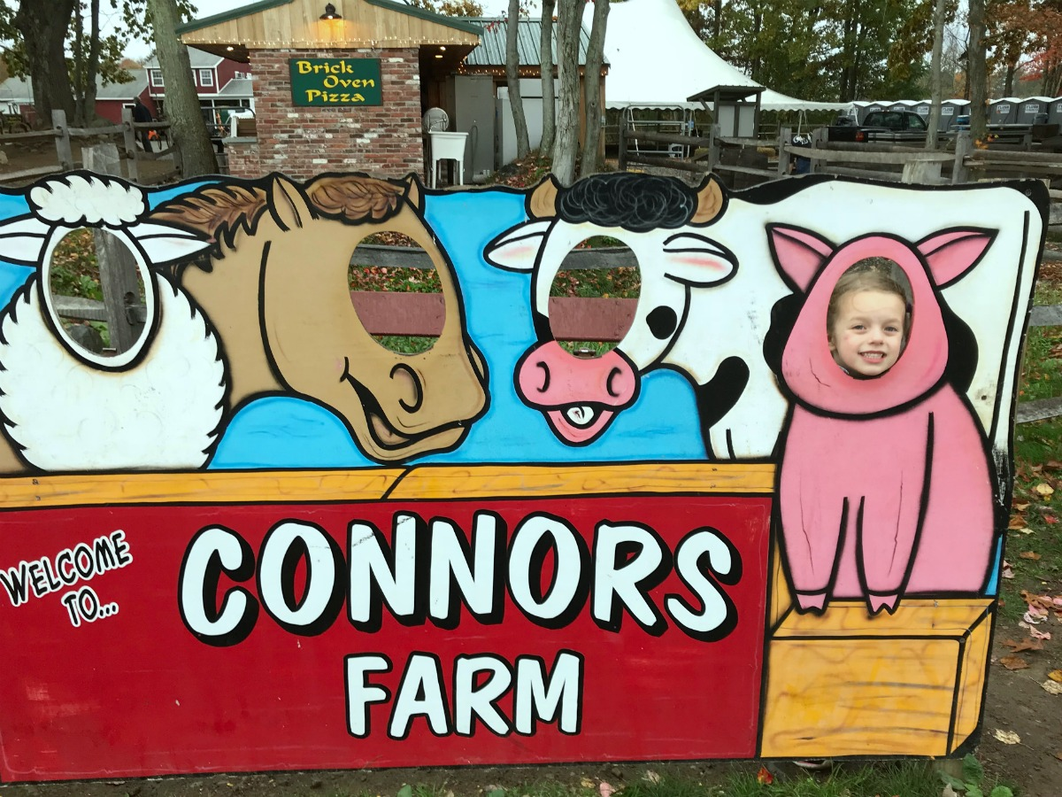 Snapshots from Connors Farm 2