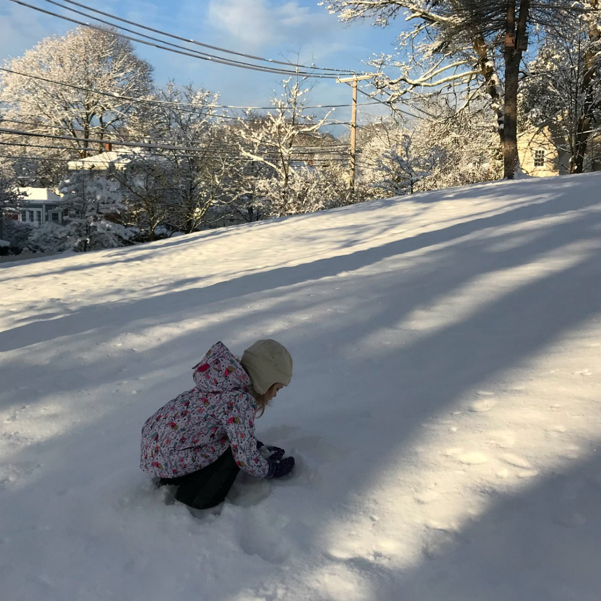 Snapshots from the snow 10