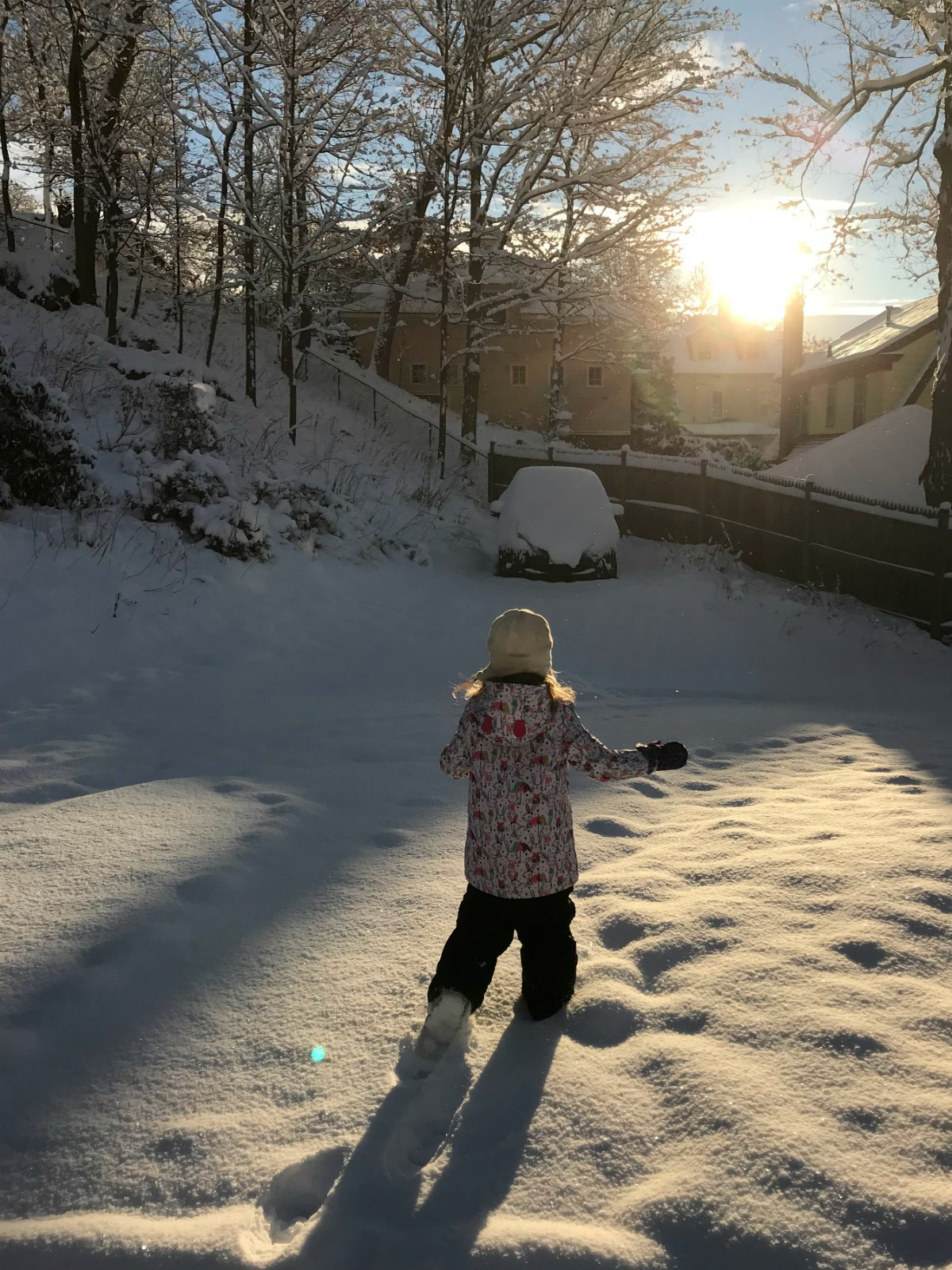Snapshots from the snow 4