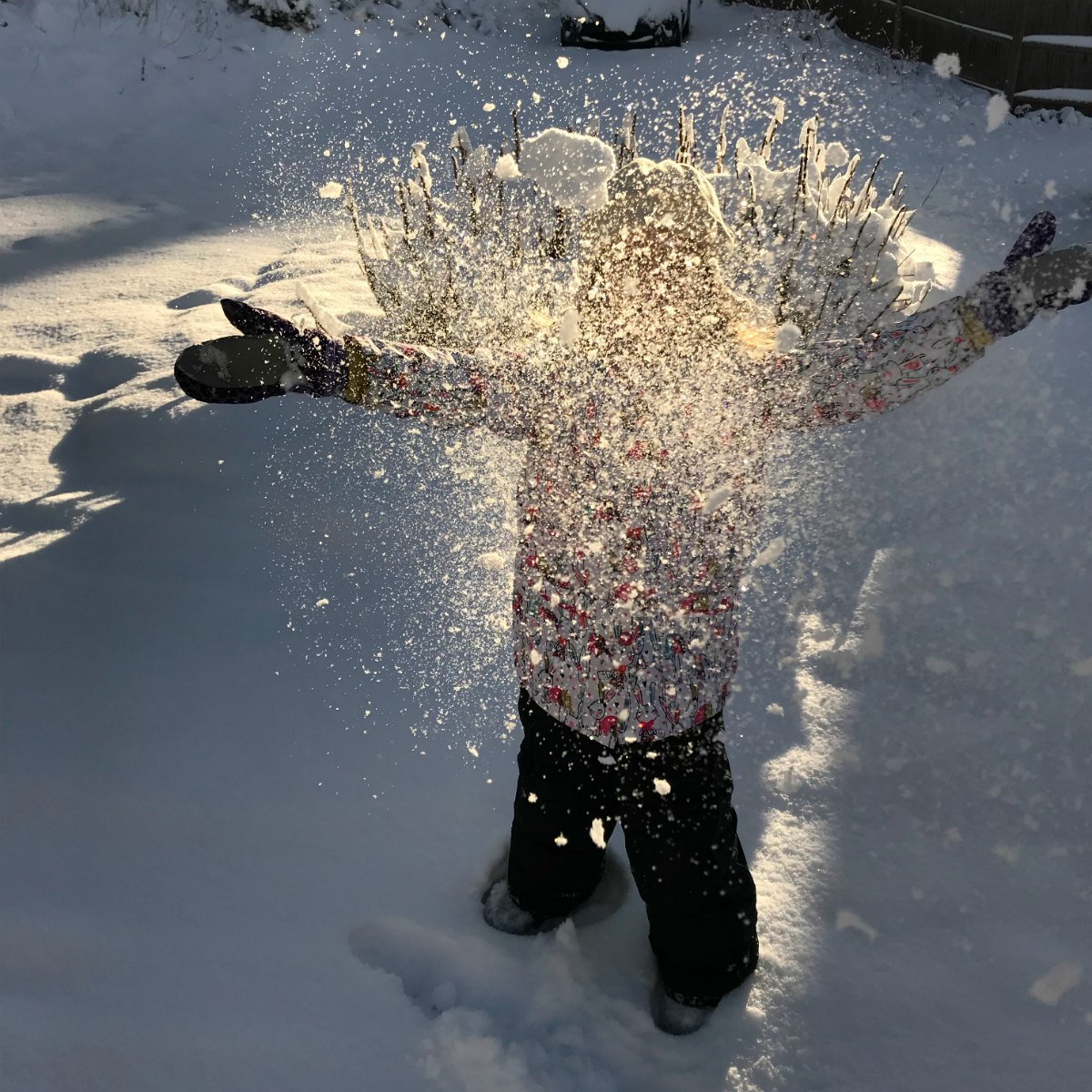 Snapshots from the snow 6