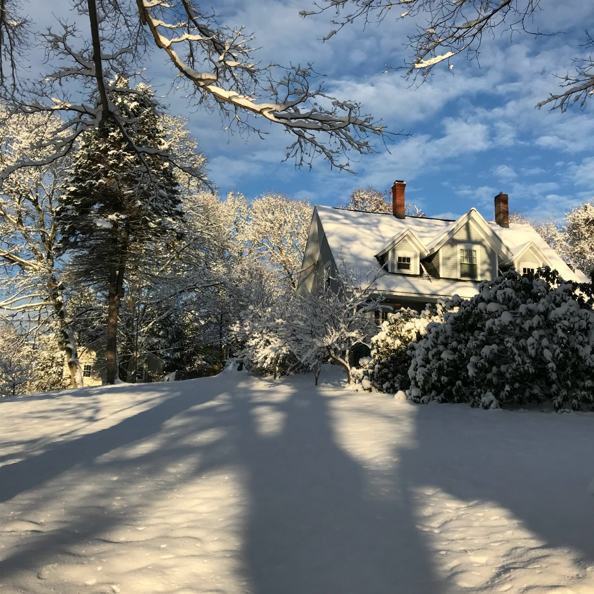 Snapshots from the snow 9