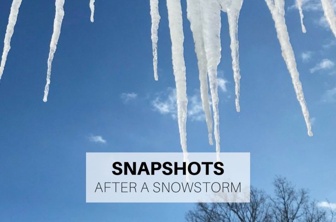 Snapshots after a snowstorm