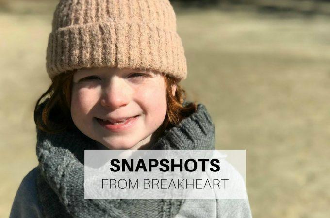 Snapshots from Breakheart Reservation