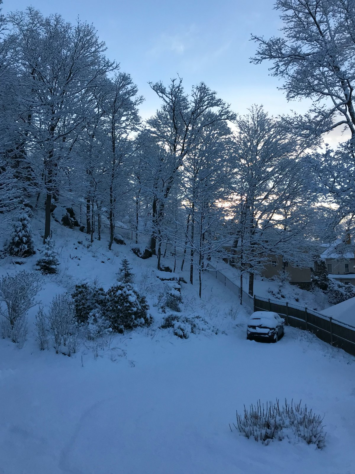 Snapshots of our winter Part 1 - 1