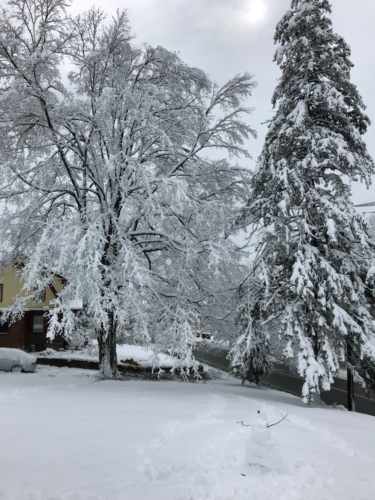 Snapshots of our winter Part 1 - 15