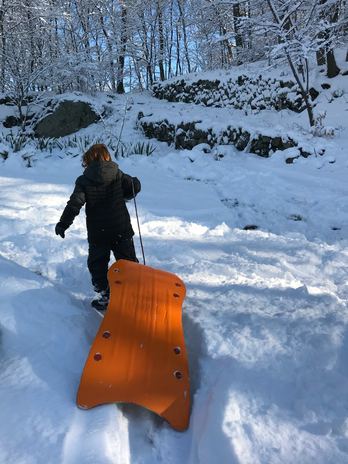 Snapshots of our winter Part 1 - 6