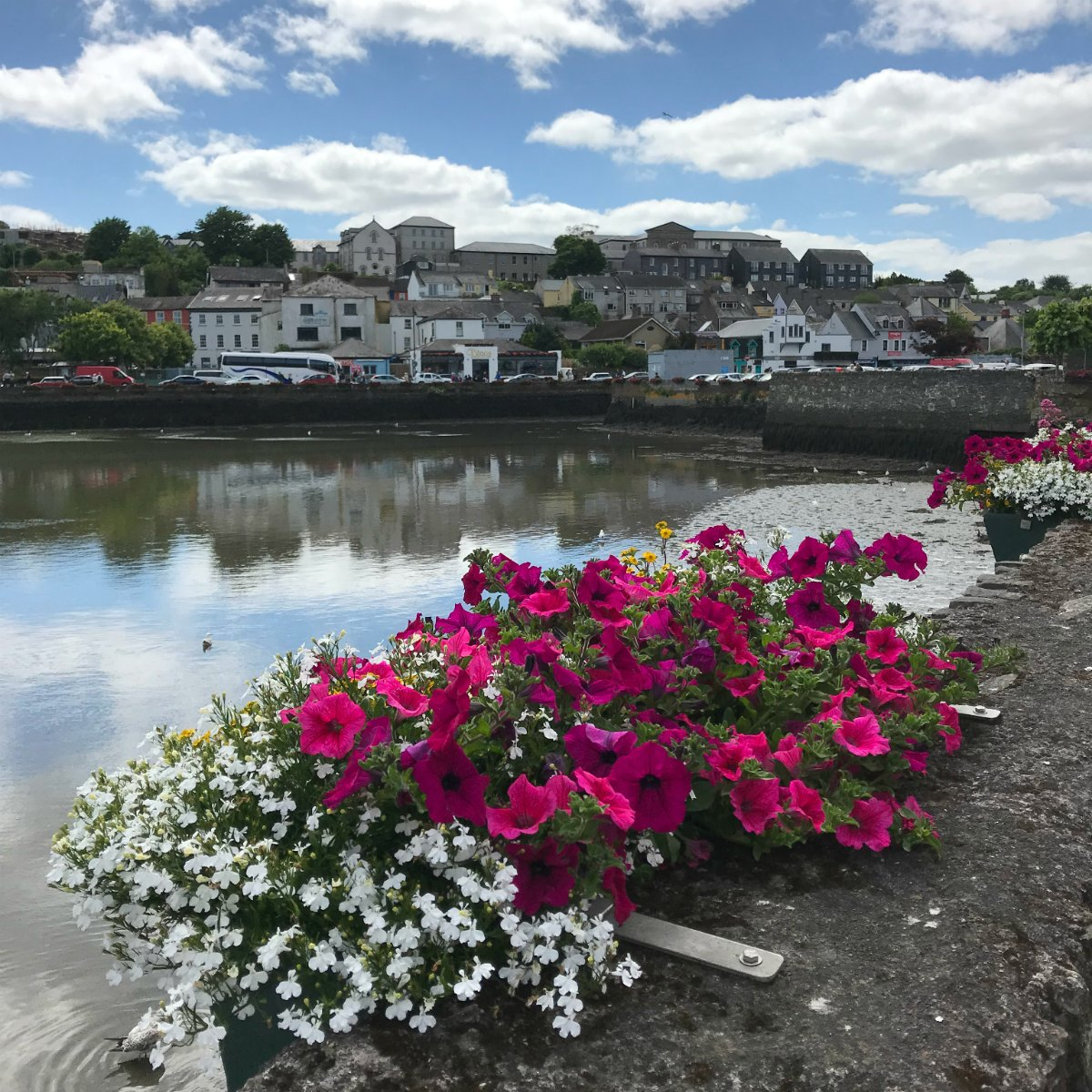 Snaphots from Ireland - Kinsale 1